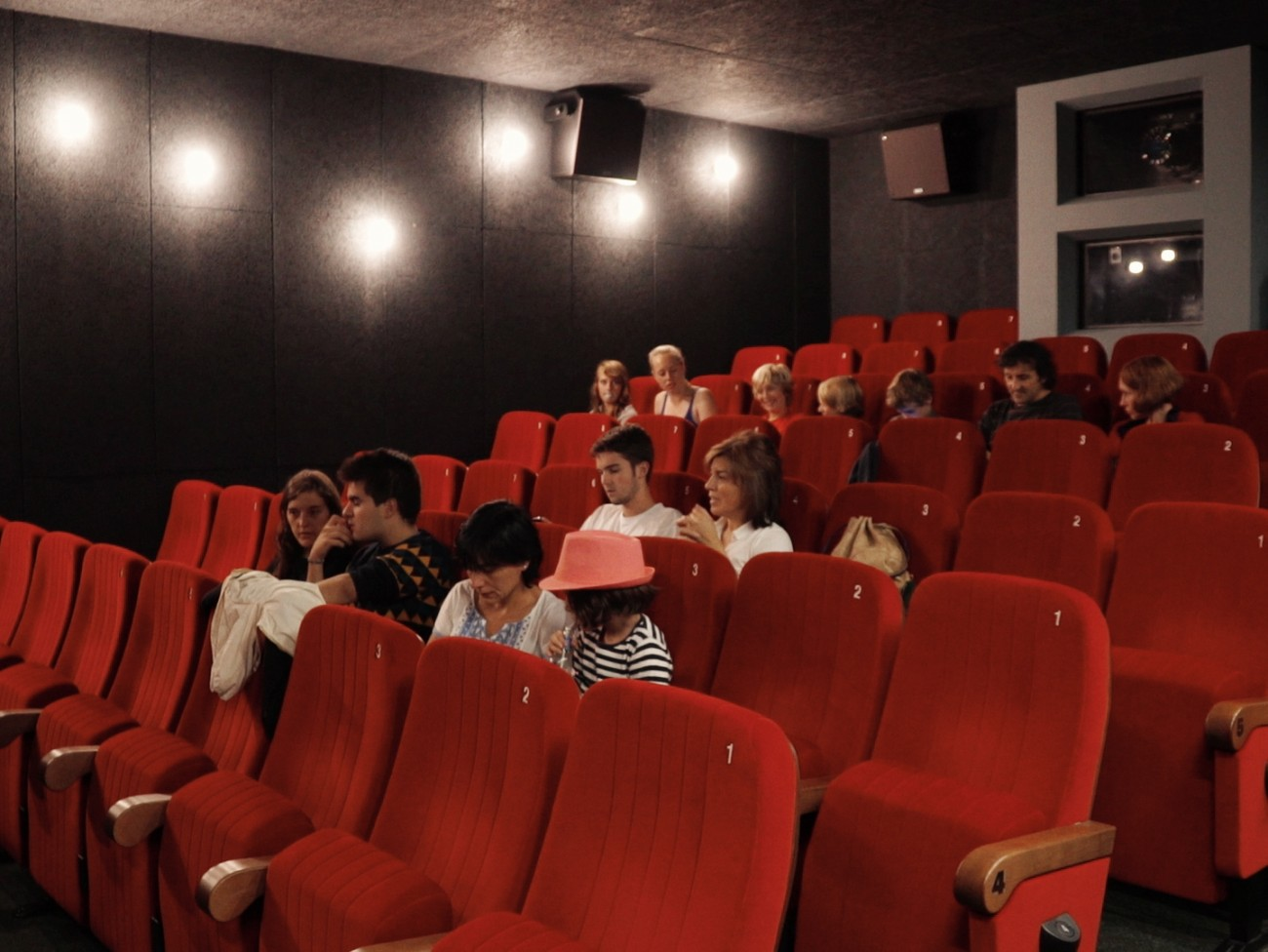 Ce cinéma repose sur une implication très forte du public, ayant pu voir le jour grâce au soutien de la communauté : 182 personnes se sont portées garantes pour le crédit nécessaire à la mise en place de ce projet.