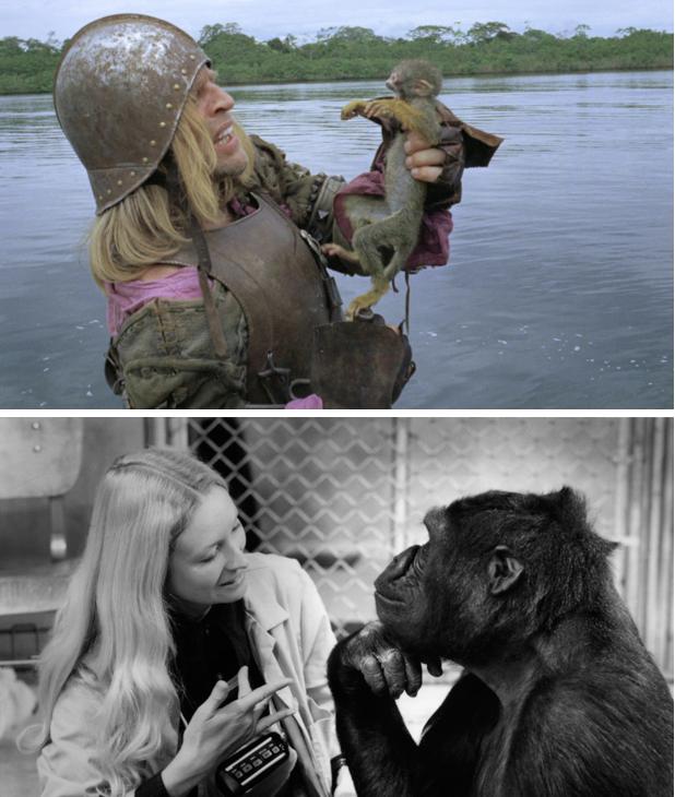 Aguirre, la colère de Dieu (Werner Herzog, 1972) / Koko le gorille qui parle (Barbet Schroeder, 1978).