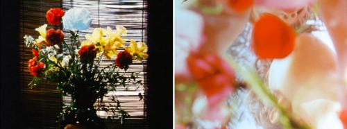 Notre-Dame des Fleurs (Carmelo Bene, 1968).