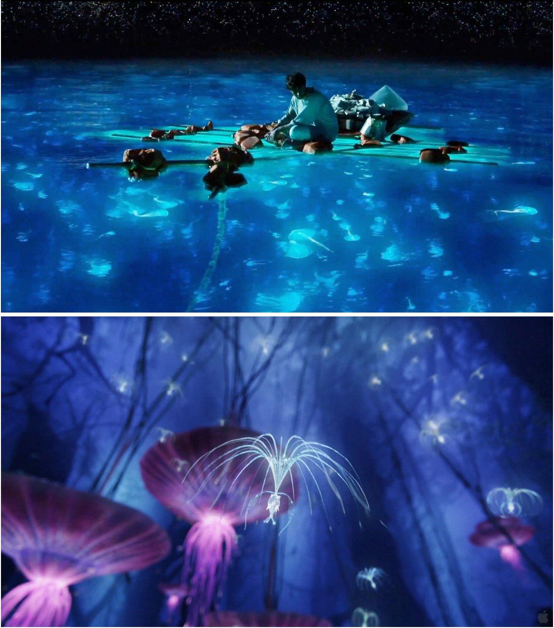 L'Odyssée de Pi / Avatar (James Cameron, 2009).