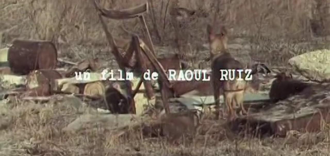 Colloque de chiens (Raoul Ruiz, 1977).