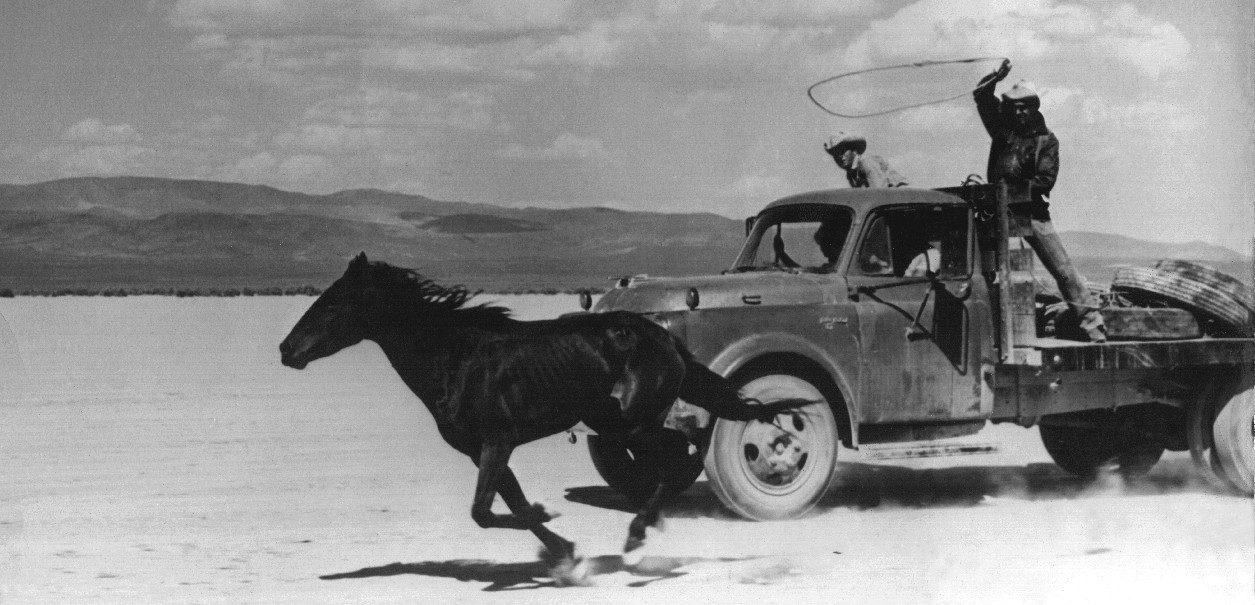 Les Désaxés (John Huston, 1961).