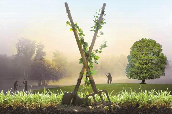 L'Éveil de la permaculture _affiche